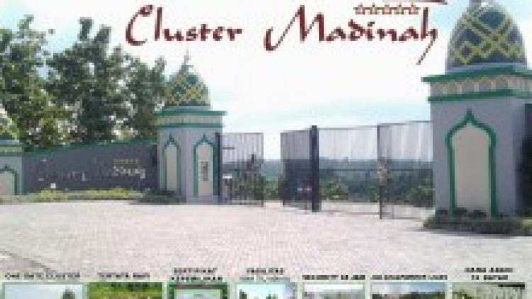 Cluster Madinah